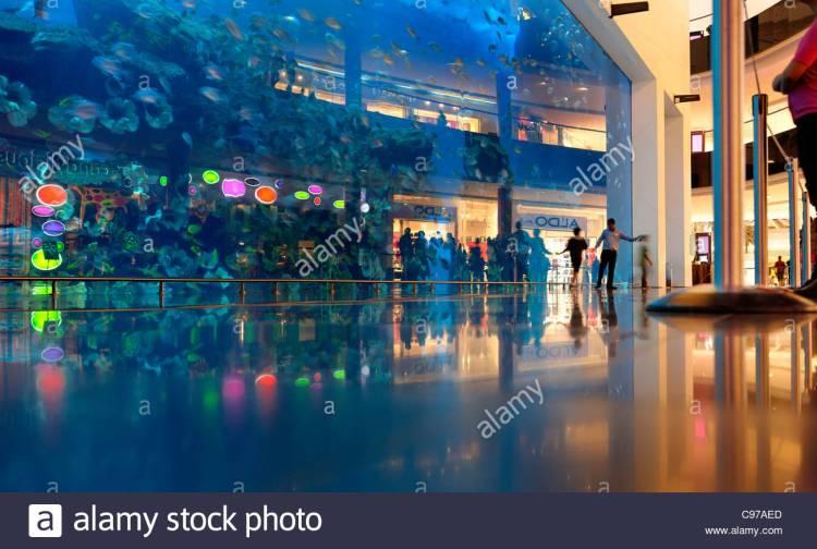 dubai-aquarium-and-underwater-zoo-saltwater-aquarium-in-dubai-mall-c97aed